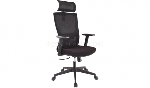 executive chair with adjustable lumbar support